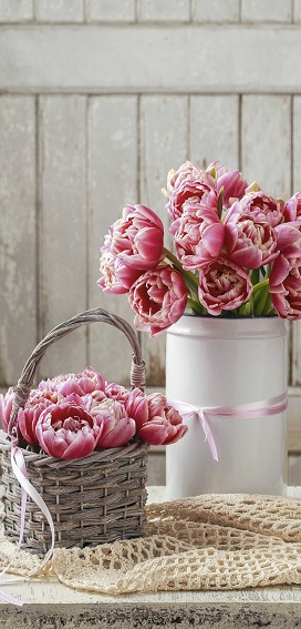 display banner 'roze tulpen'